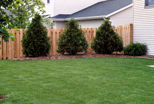 fences vinyl near me, fence companies near me, fencing, fence, fences, fencing companies near me, privacy fencing, privacy fence, Wood fence, dog fence, fencing near me, fencing companies,Gates & fencing, vinyl privacy fence, pet fence, pet fence near me, Gate Operators, Guard Rails, commercial fencing, galvanized fence post, rabbit fence, residential fencing, commercial fence, Dog Kennel fence, shadow box fence, rabbit fencing, white pvc fence,